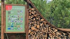 Открытие экотропы «Черный ключ» близ Магадана