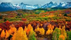 Рыжая осень. Фантастически прекрасные фотографии